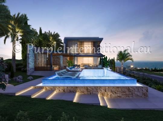 Luxury Villa In Moutagiaka